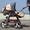 коляска джип-трансформер с рождения до 3х лет продаю  #692761